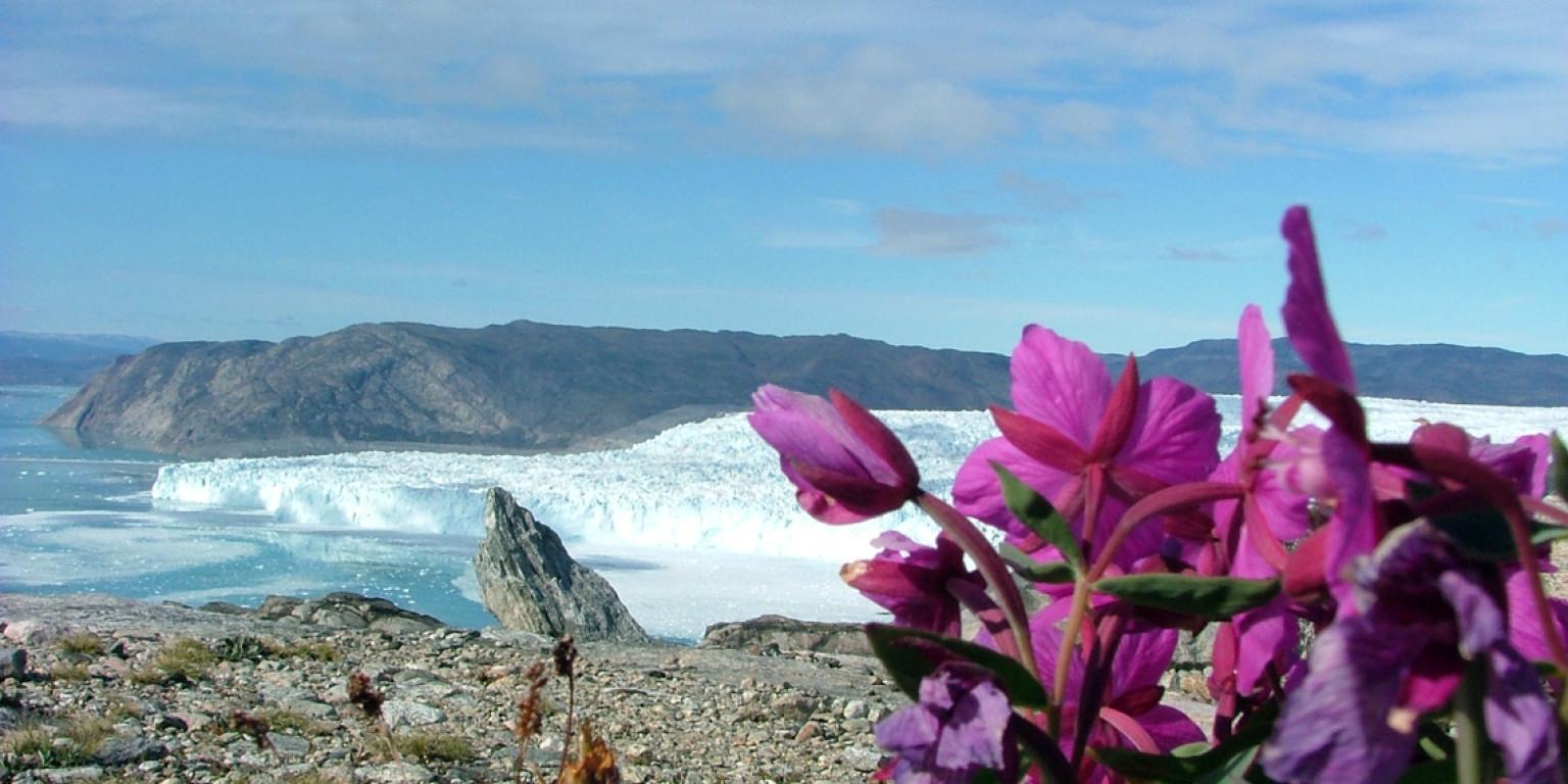 George Ringler in Greenland