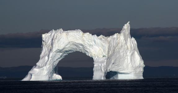 Calving Glaciers, Whales and Icebergs